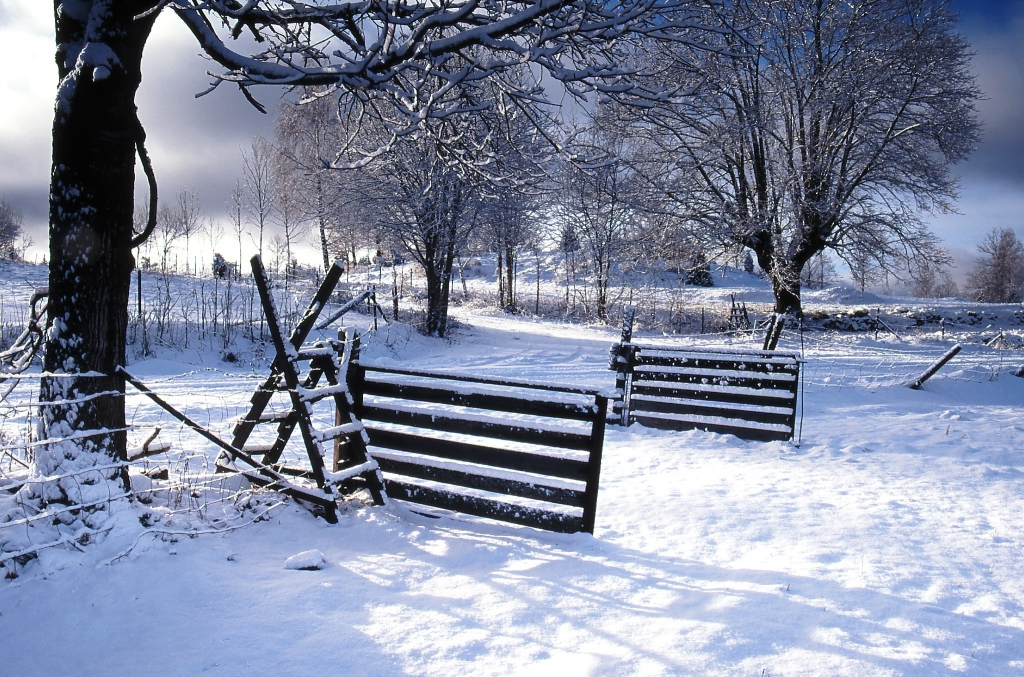 Torpa vintermotiv